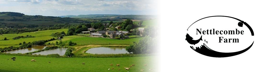 nettlecombe-farm
